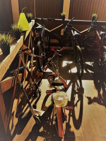 Rental of bikes #2